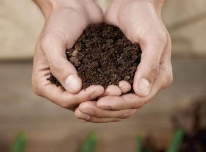 地域食品資源循環ソリューション